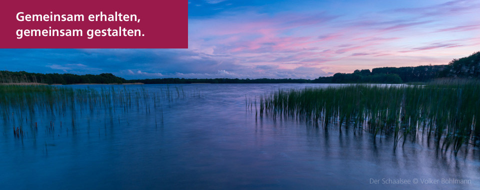Die Ufer des Schaalsees im UNESCO-Biosphärenreservat Schaalsee sind weitgehend natürlich und unbebaut. Wir helfen, dass es so bleibt. Foto: © Volker Bohlmann