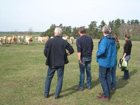Besichtigung des Rinderzuchtbetriebes Bobzin in Woez. Foto: Corina Müller