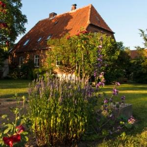 Das Hofcafé Neuendorf. Foto: Elisabeth von Randow