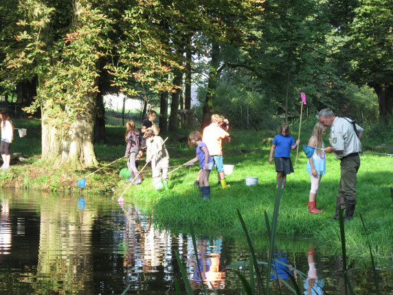 Erforschung von Kleinlebewesen im Teich. Foto: Frank Hermann