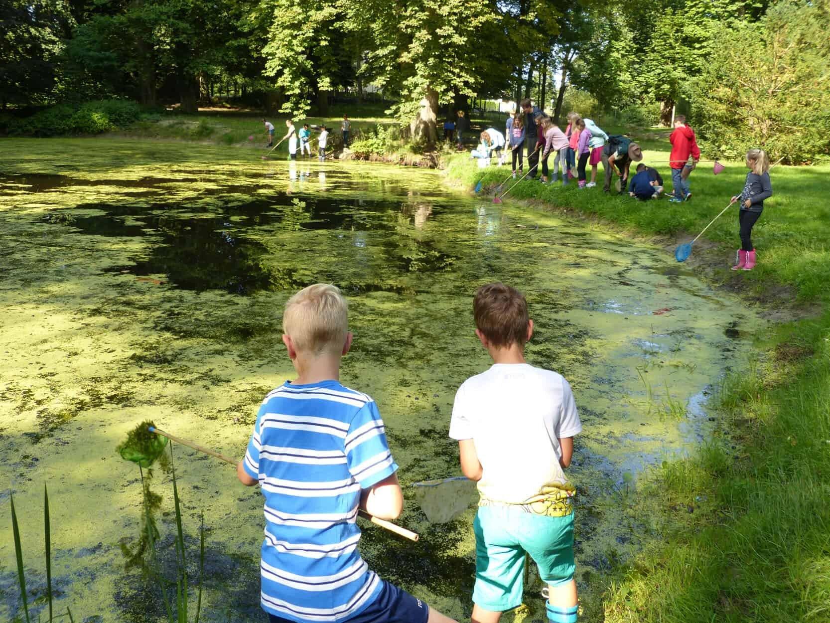 Teilnehmer des KinderFerienspaß-Biosphäre untersuchen einen Teich auf Kleinlebewesen. Foto: Frank Hermann