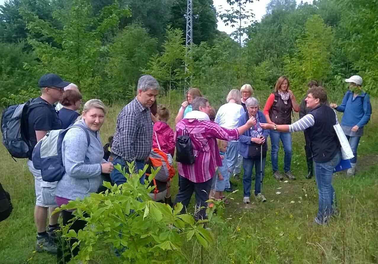 Kräuterführung mit Martina Schade auf der Halbinsel Kampenwerder. Foto: Erhard Schade