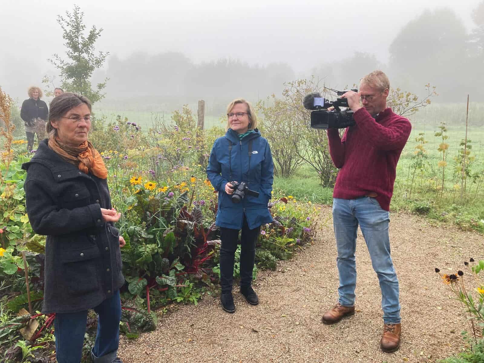 Foto: Dreharbeiten zum Insektenschutz bei Karin Falk. Fotoautor: Gerd Schriefer