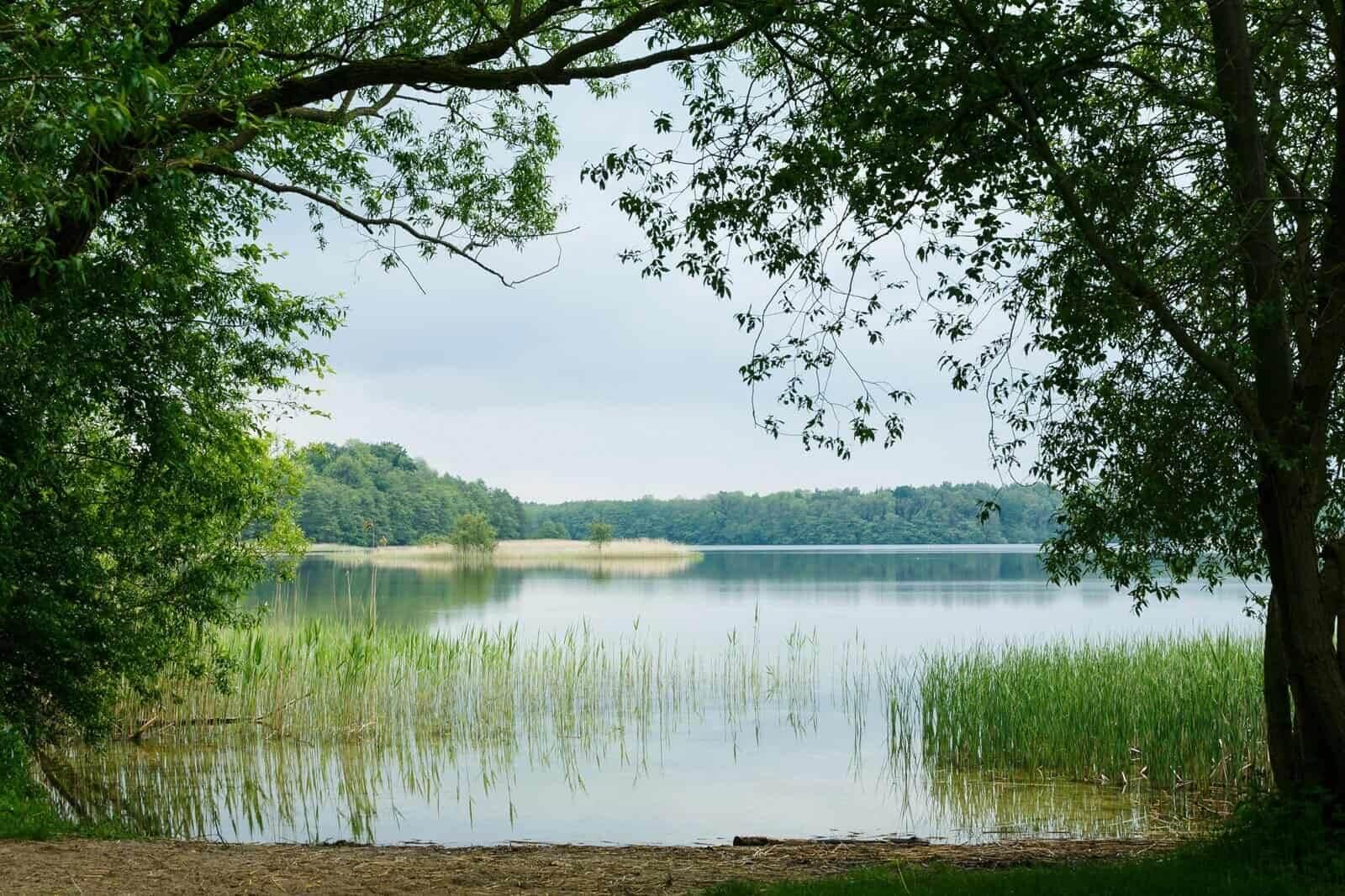 Titelfoto: Blick auf den Schaalsee. Fotoautor: Dirk Eisermann